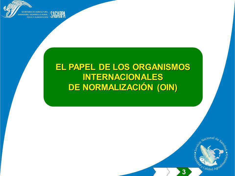 EL PAPEL DE LOS ORGANISMOS INTERNACIONALES DE NORMALIZACIÓN (OIN) 3