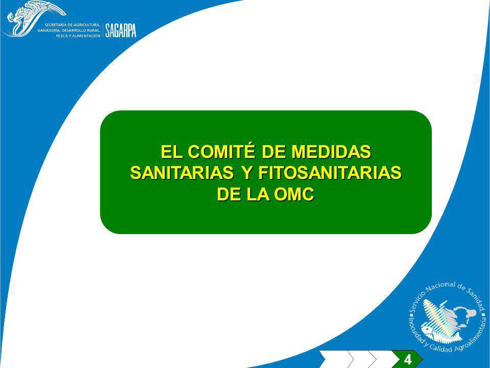 EL COMITÉ DE MEDIDAS SANITARIAS Y FITOSANITARIAS DE LA OMC 4