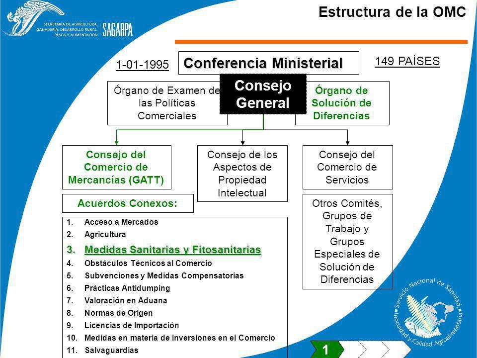Conferencia Ministerial Estructura de la OMC Órgano de Examen de las Políticas Comerciales Órgano de Solución de Diferencias Consejo General Consejo d
