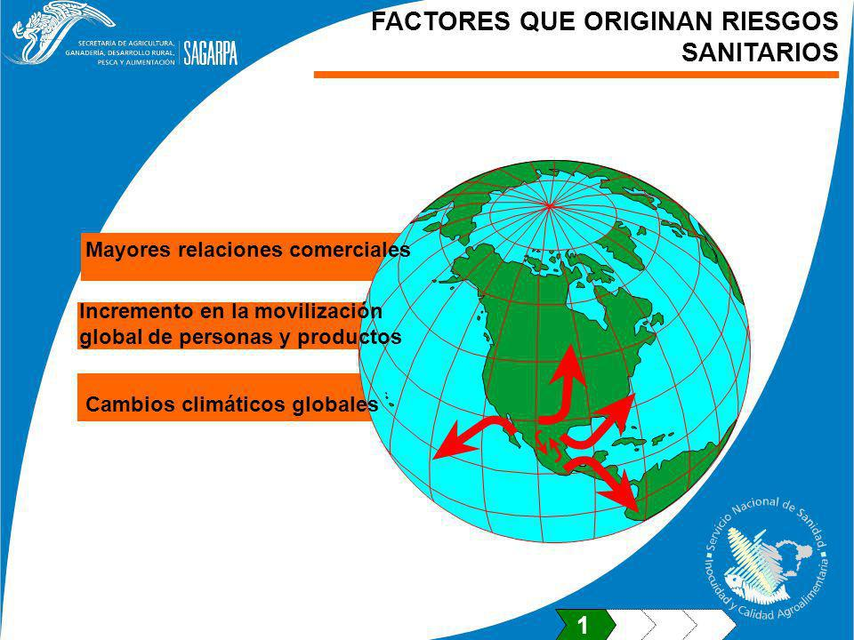 FACTORES QUE ORIGINAN RIESGOS SANITARIOS Mayores relaciones comerciales Incremento en la movilización global de personas y productos Cambios climáticos globales 1