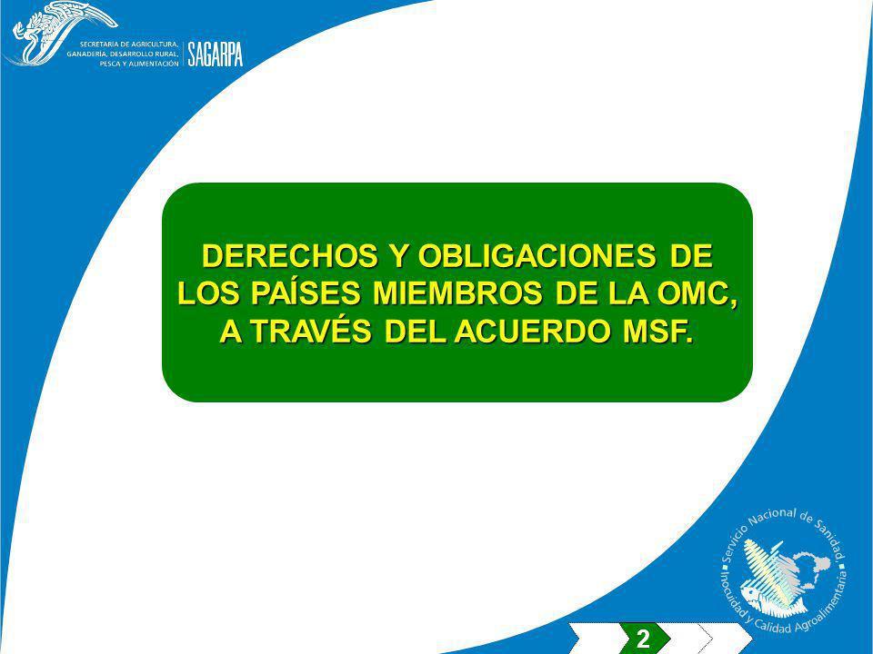 DERECHOS Y OBLIGACIONES DE LOS PAÍSES MIEMBROS DE LA OMC, A TRAVÉS DEL ACUERDO MSF. 2