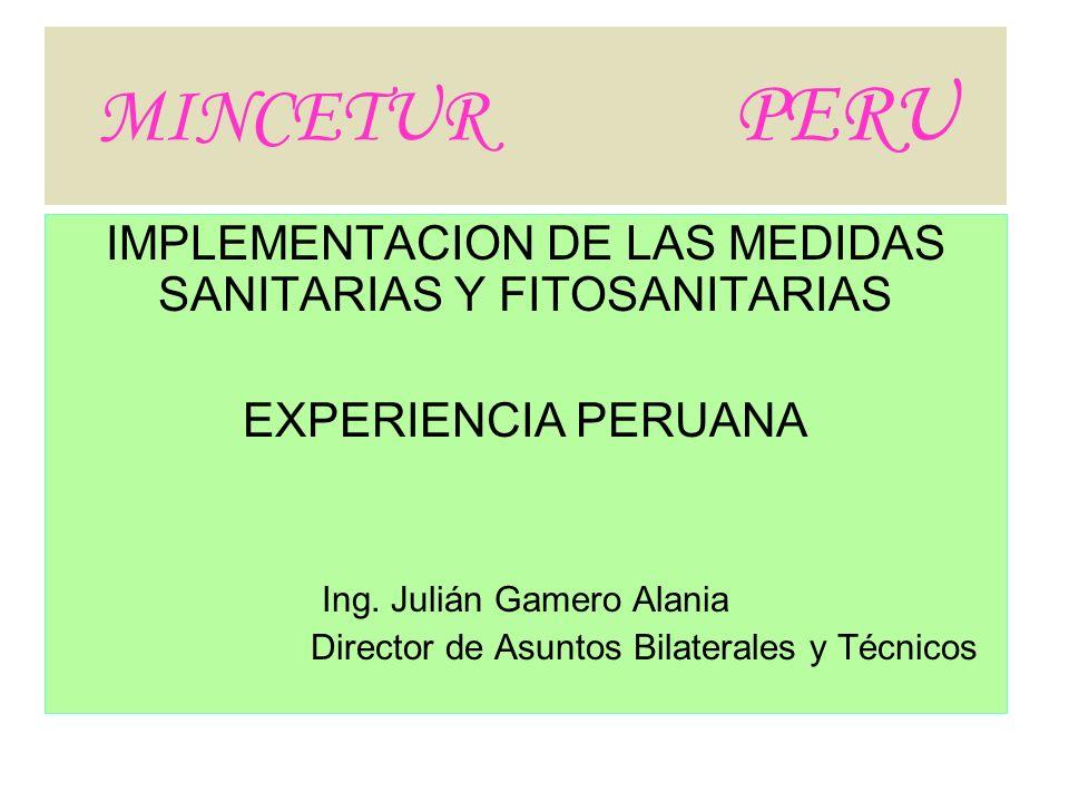 MINCETUR PERU IMPLEMENTACION DE LAS MEDIDAS SANITARIAS Y FITOSANITARIAS EXPERIENCIA PERUANA Ing. Julián Gamero Alania Director de Asuntos Bilaterales