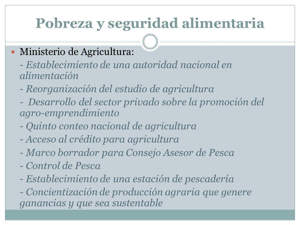 Ministerio de Agricultura: - Establecimiento de una autoridad nacional en alimentación - Reorganización del estudio de agricultura - Desarrollo del se