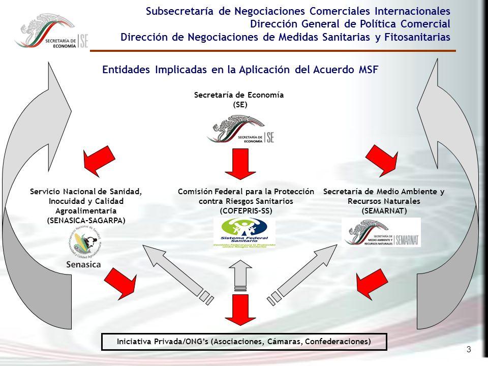 3 Subsecretaría de Negociaciones Comerciales Internacionales Dirección General de Política Comercial Dirección de Negociaciones de Medidas Sanitarias