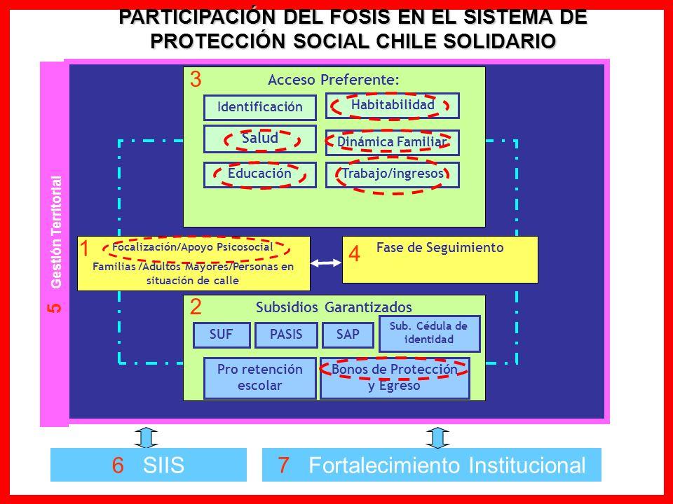 PARTICIPACIÓN DEL FOSIS EN EL SISTEMA DE PROTECCIÓN SOCIAL CHILE SOLIDARIO Fase de Seguimiento Subsidios Garantizados Pro retención escolar SAPPASISSU