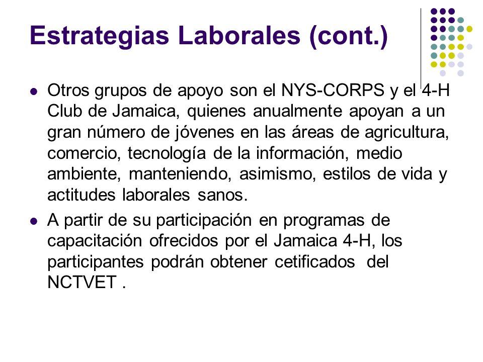 Estrategias Laborales (cont.) Otros grupos de apoyo son el NYS-CORPS y el 4-H Club de Jamaica, quienes anualmente apoyan a un gran número de jóvenes en las áreas de agricultura, comercio, tecnología de la información, medio ambiente, manteniendo, asimismo, estilos de vida y actitudes laborales sanos.