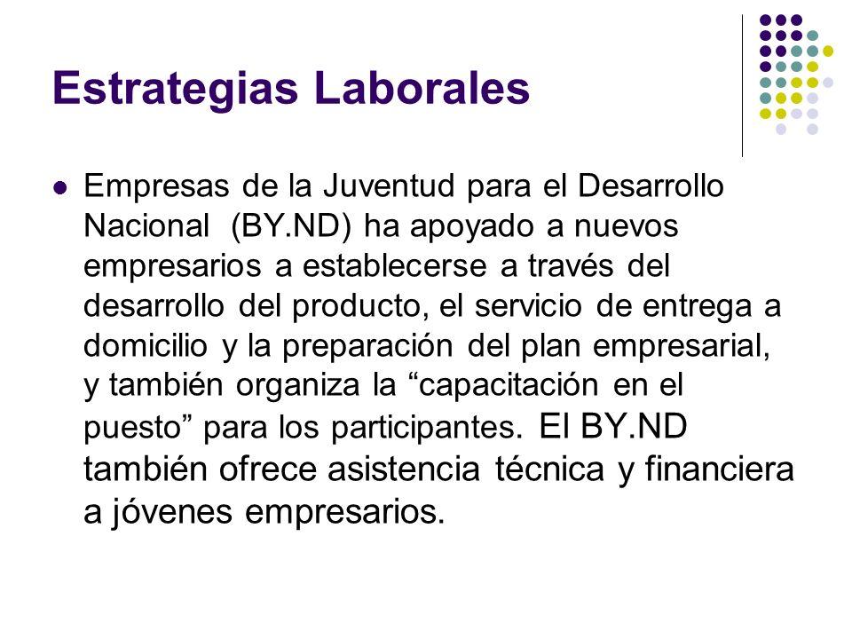 Estrategias Laborales Empresas de la Juventud para el Desarrollo Nacional (BY.ND) ha apoyado a nuevos empresarios a establecerse a través del desarrollo del producto, el servicio de entrega a domicilio y la preparación del plan empresarial, y también organiza la capacitación en el puesto para los participantes.