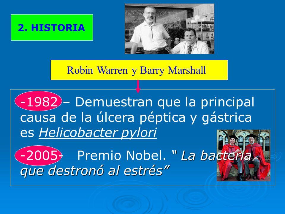 2. HISTORIA Robin Warren y Barry Marshall -1982 – Demuestran que la principal causa de la úlcera péptica y gástrica es Helicobacter pylori La bacteria
