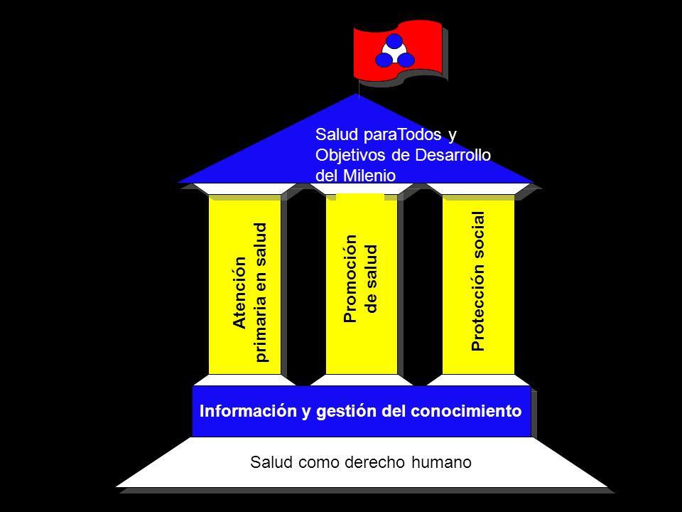 Salud paraTodos y Objetivos de Desarrollo del Milenio Información y gestión del conocimiento Salud como derecho humano Atención primaria en salud Prom