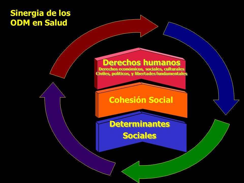 Derechos humanos Derechos económicos, sociales, culturales Civiles, políticos, y libertades fundamentales Derechos humanos Derechos económicos, social