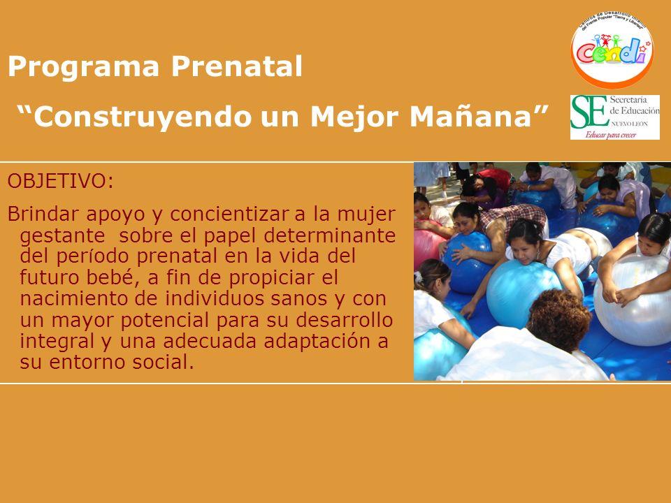 Programa Prenatal Construyendo un Mejor Mañana OBJETIVO: Brindar apoyo y concientizar a la mujer gestante sobre el papel determinante del per í odo pr