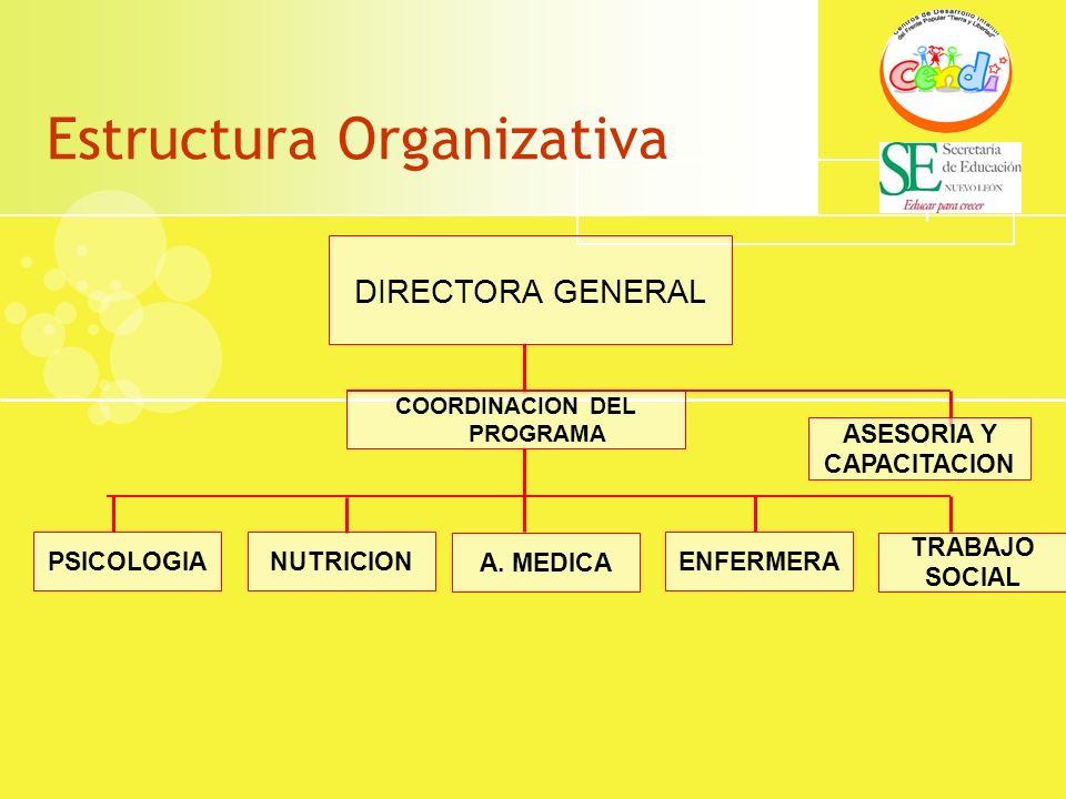 Estructura Organizativa DIRECTORA GENERAL COORDINACION DEL PROGRAMA A. MEDICA NUTRICIONPSICOLOGIAENFERMERA TRABAJO SOCIAL ASESORIA Y CAPACITACION