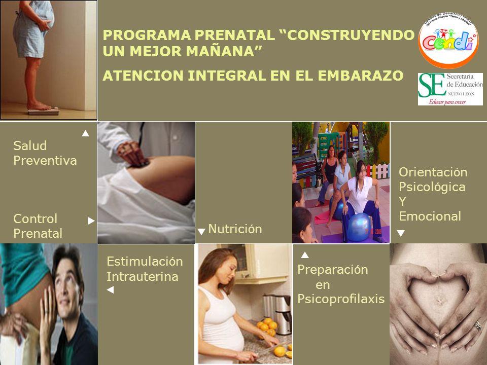 Salud Preventiva Control Prenatal Preparaci ó n en Psicoprofilaxis Nutrici ó n Orientaci ó n Psicol ó gica Y Emocional PROGRAMA PRENATAL CONSTRUYENDO