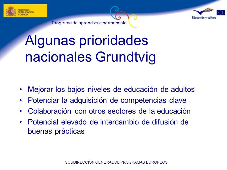 Programa de aprendizaje permanente SUBDIRECCIÓN GENERAL DE PROGRAMAS EUROPEOS Algunas prioridades nacionales Grundtvig Mejorar los bajos niveles de ed