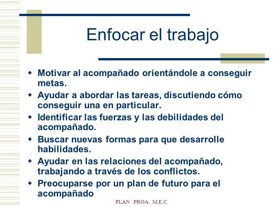 PLAN PROA. M.E.C Enfocar el trabajo Motivar al acompañado orientándole a conseguir metas. Ayudar a abordar las tareas, discutiendo cómo conseguir una