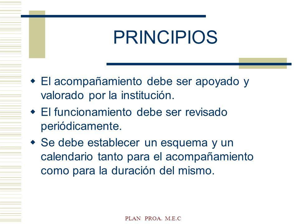 PLAN PROA. M.E.C PRINCIPIOS El acompañamiento debe ser apoyado y valorado por la institución. El funcionamiento debe ser revisado periódicamente. Se d