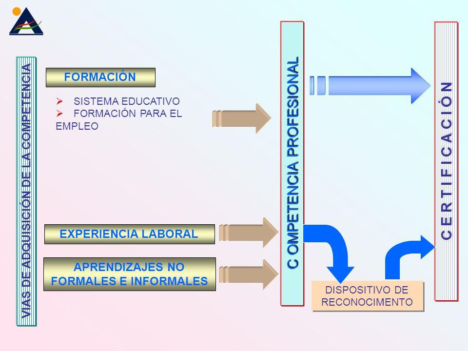 FORMACIÓN SISTEMA EDUCATIVO FORMACIÓN PARA EL EMPLEO VIAS DE ADQUISICIÓN DE LA COMPETENCIA EXPERIENCIA LABORAL APRENDIZAJES NO FORMALES E INFORMALES DISPOSITIVO DE RECONOCIMENTO C E R T I F I C A C I Ó N C OMPETENCIA PROFESIONAL