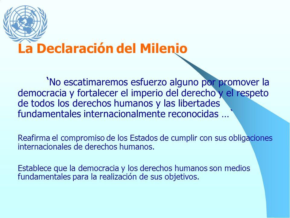 El Informe Un Concepto más amplio de libertad Reafirmación de la centralidad de los derechos humanos en la implementación de la Declaración del Mileni