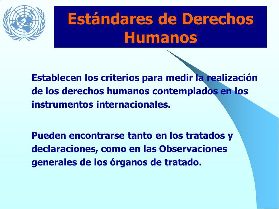 2. Los estándares y principios de derechos humanos contenidos en la Declaración Universal de Derechos Humanos, así como en otros instrumentos internac