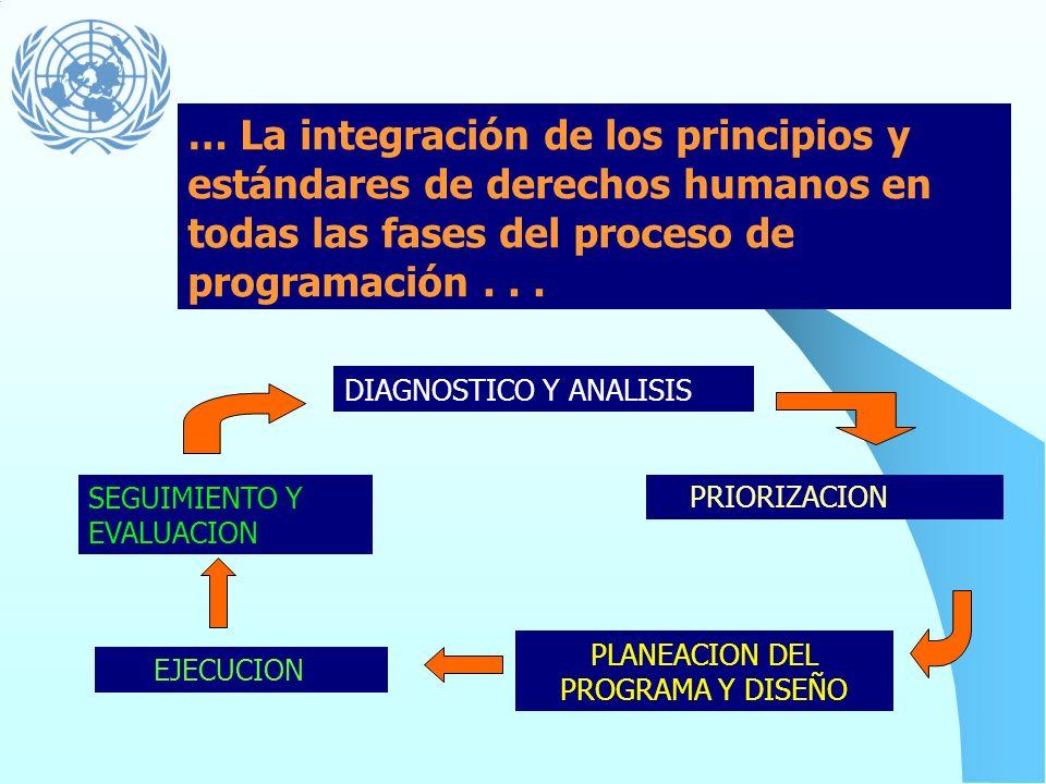 Principios que orientan la programación Universalidad e inalienabilidad Indivisibilidad Interdependencia e interrelación Igualdad y no-discriminación