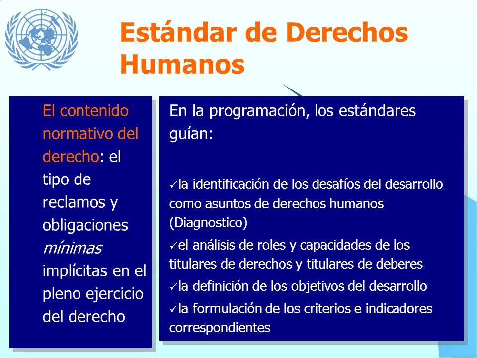 Cuales son las bases del Enfoque? Principios de Derechos Humanos Estándares de Derechos Humanos