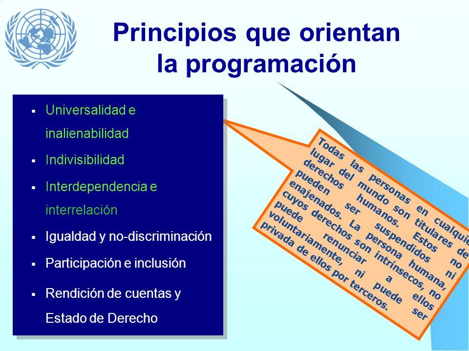 Los estándares que guían la programación... Establecen criterios para medir la realización de los derechos humanos contemplados en los instrumentos in