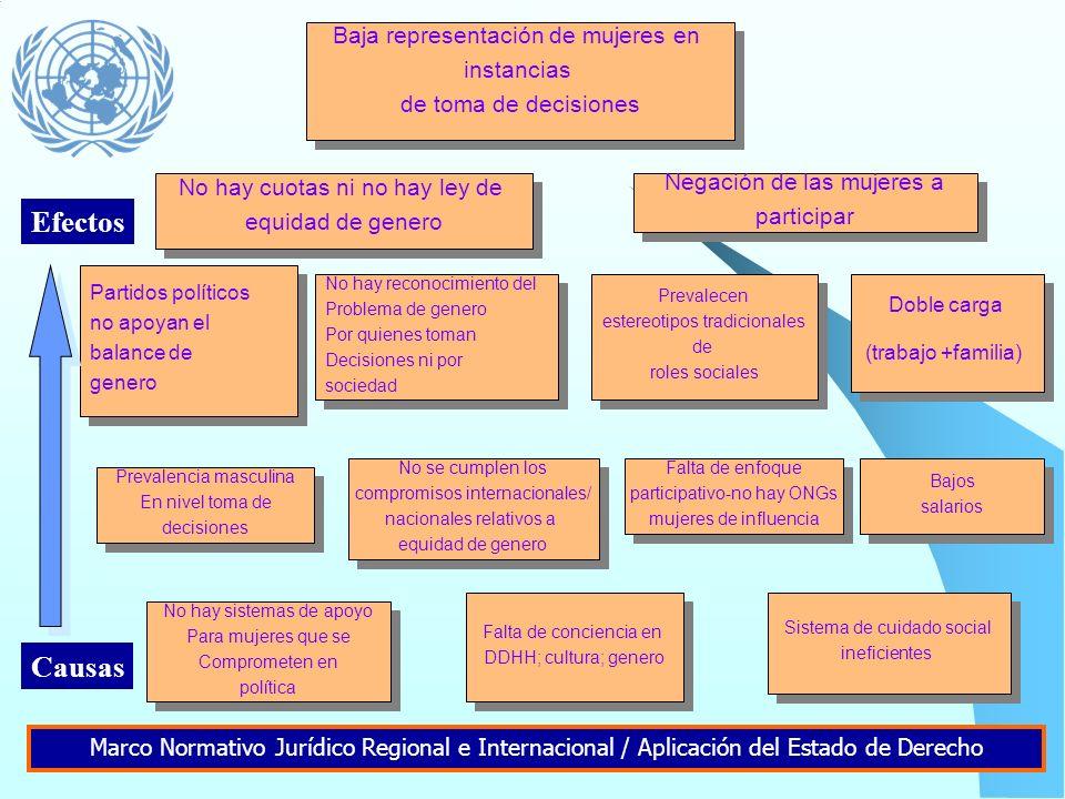 Retos del desarrollo/derechos no realizados Causas estructurales Sociedad, Políticas, Recursos Causas subyacentes Servicios, Acceso, Practicas Causas
