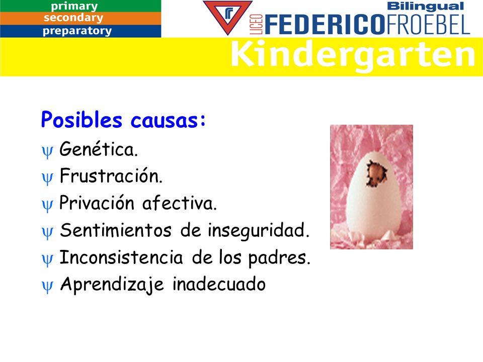 Posibles causas: Genética. Frustración. Privación afectiva. Sentimientos de inseguridad. Inconsistencia de los padres. Aprendizaje inadecuado