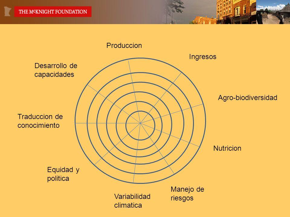 Produccion Ingresos Agro-biodiversidad Nutricion Manejo de riesgos Equidad y politica Variabilidad climatica Traduccion de conocimiento Desarrollo de capacidades