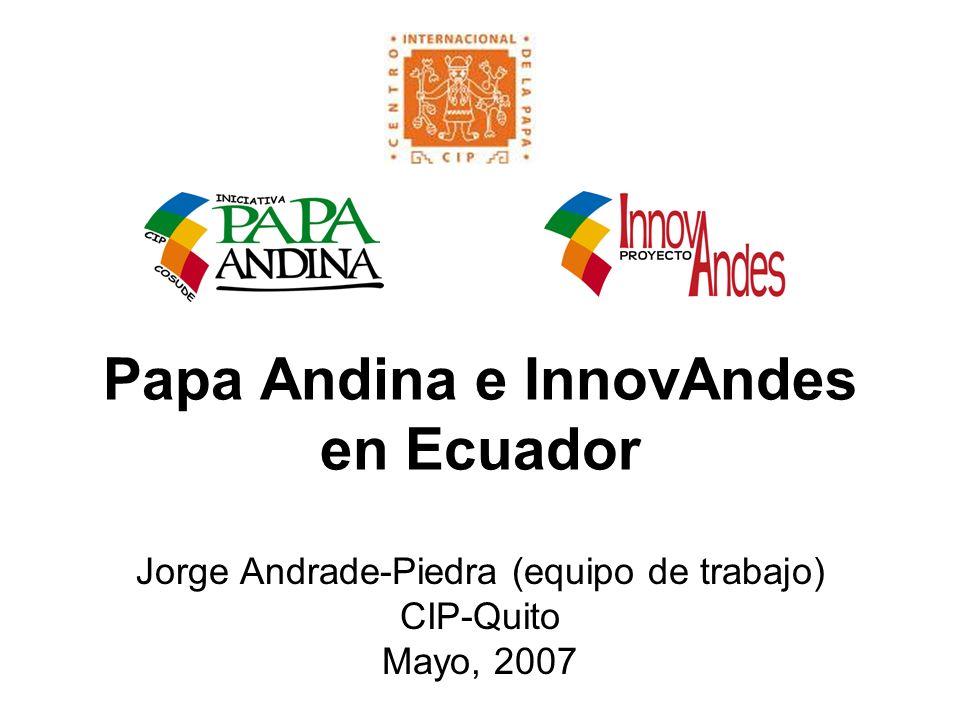 Papa Andina e InnovAndes en Ecuador Jorge Andrade-Piedra (equipo de trabajo) CIP-Quito Mayo, 2007