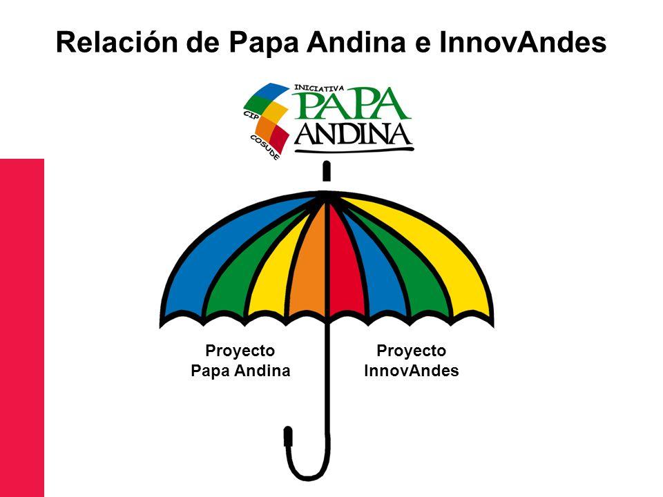 Relación de Papa Andina e InnovAndes Proyecto Papa Andina Proyecto InnovAndes
