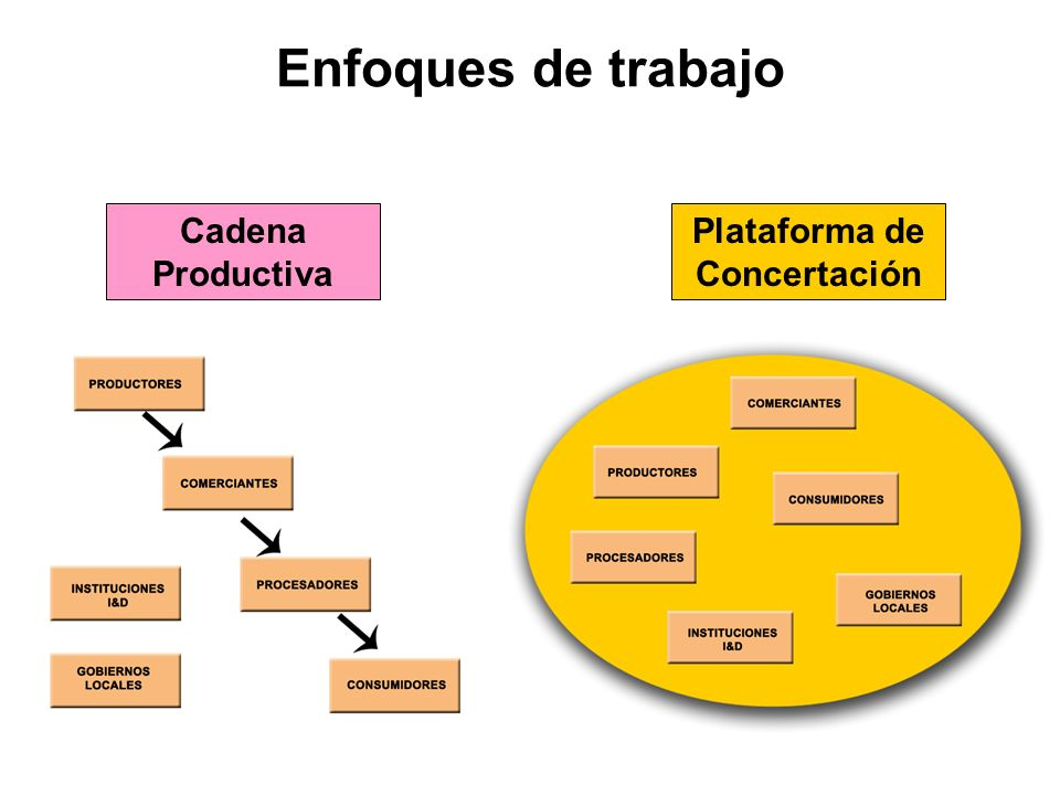 Enfoques de trabajo Cadena Productiva Plataforma de Concertación