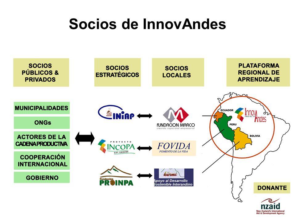Socios de InnovAndes