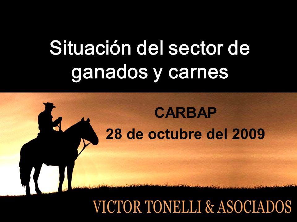 Situación del sector de ganados y carnes CARBAP 28 de octubre del 2009