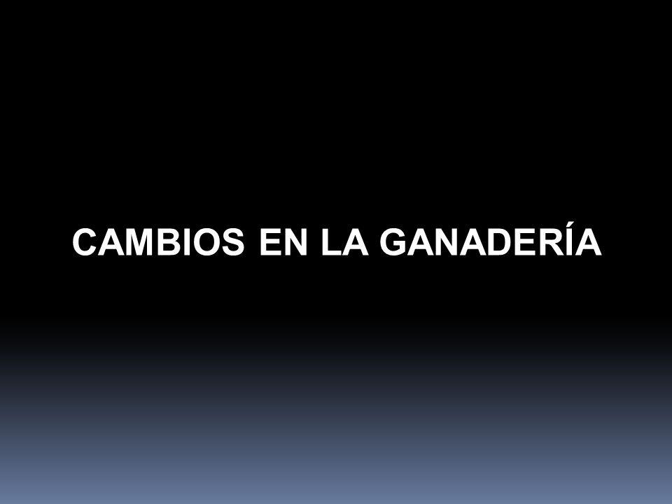 CAMBIOS EN LA GANADERÍA