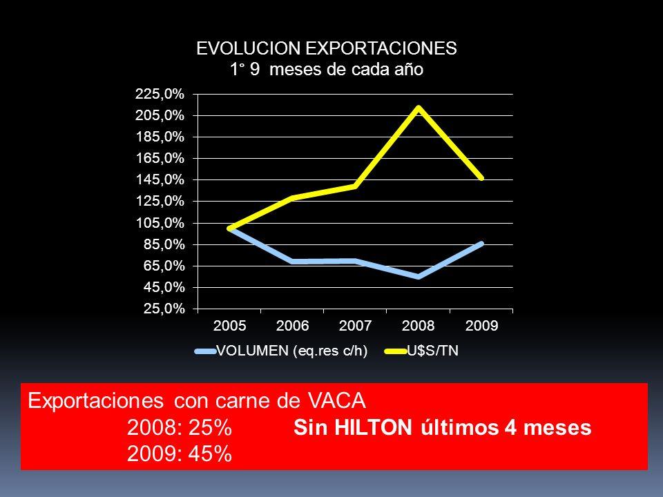 Exportaciones con carne de VACA 2008: 25% Sin HILTON últimos 4 meses 2009: 45%