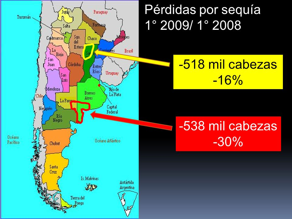 Pérdidas por sequía 1° 2009/ 1° 2008 -538 mil cabezas -30% -518 mil cabezas -16%
