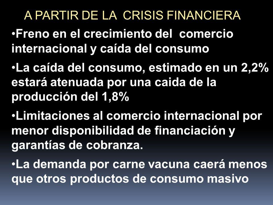 A PARTIR DE LA CRISIS FINANCIERA Freno en el crecimiento del comercio internacional y caída del consumo La caída del consumo, estimado en un 2,2% estará atenuada por una caida de la producción del 1,8% Limitaciones al comercio internacional por menor disponibilidad de financiación y garantías de cobranza.
