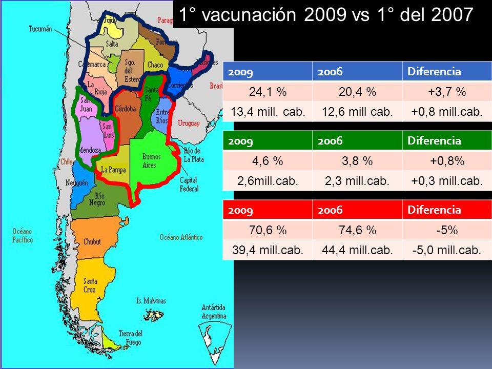 20092006Diferencia 70,6 %74,6 %-5% 39,4 mill.cab.44,4 mill.cab.-5,0 mill.cab.