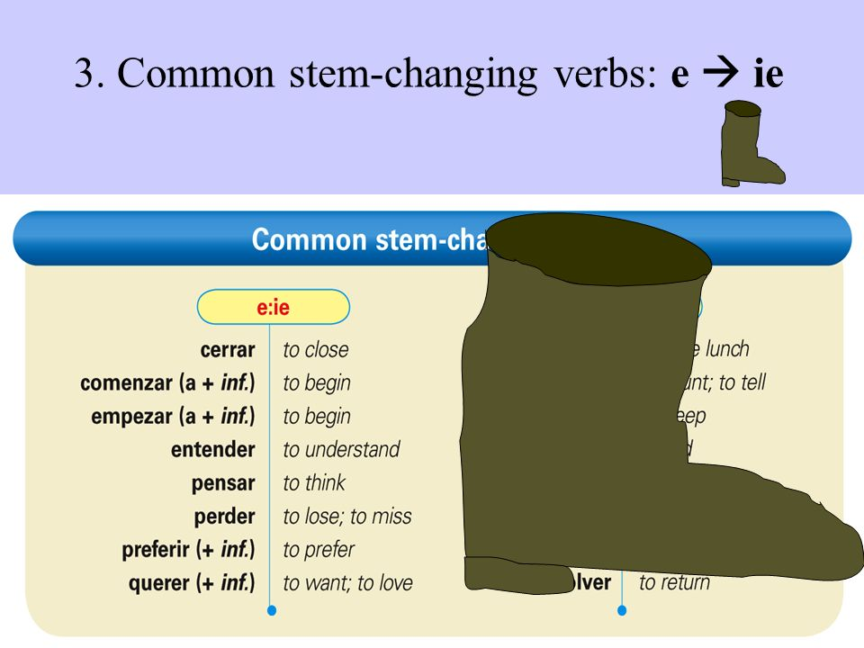 3. Common stem-changing verbs: e ie