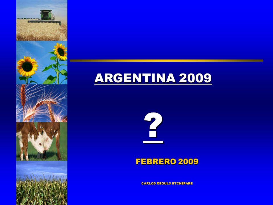 FEBRERO 2009 CARLOS REGULO ETCHEPARE ARGENTINA 2009