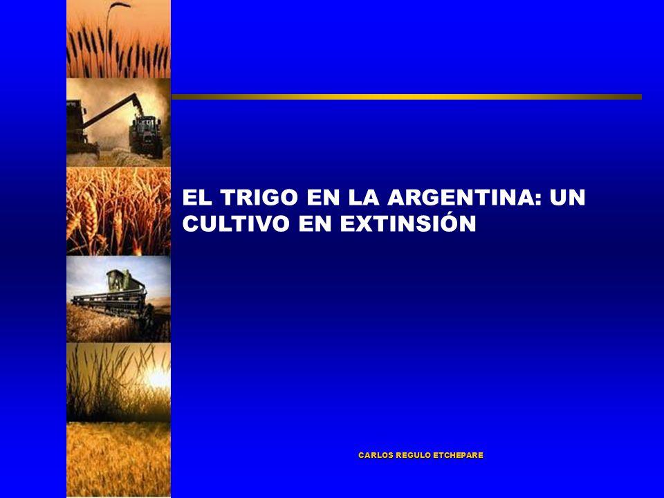 CARLOS REGULO ETCHEPARE EL TRIGO EN LA ARGENTINA: UN CULTIVO EN EXTINSIÓN