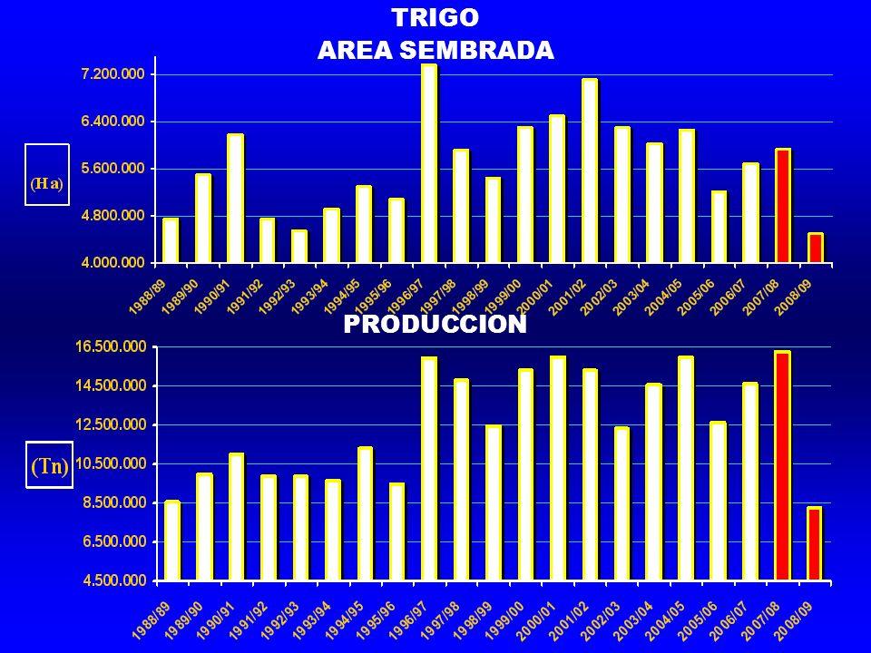 TRIGO AREA SEMBRADA PRODUCCION