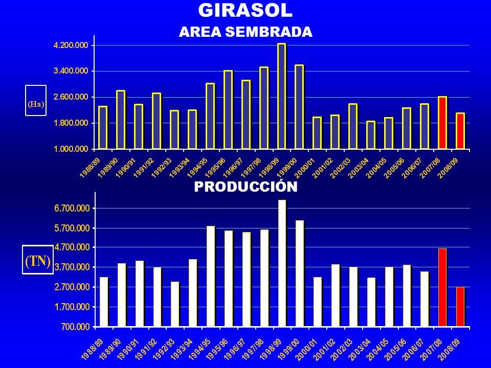 GIRASOL AREA SEMBRADA PRODUCCIÓN