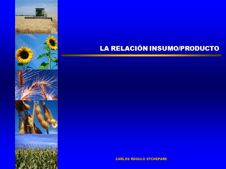 LA RELACIÓN INSUMO/PRODUCTO CARLOS REGULO ETCHEPARE