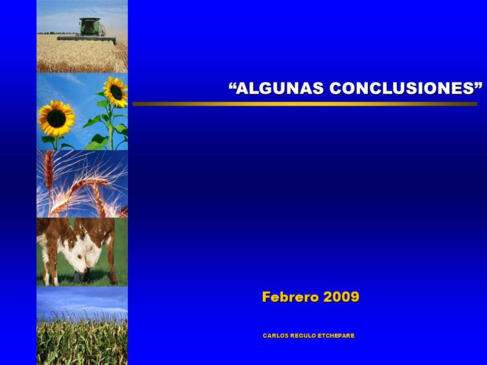 ALGUNAS CONCLUSIONES Febrero 2009 Febrero 2009 CARLOS REGULO ETCHEPARE