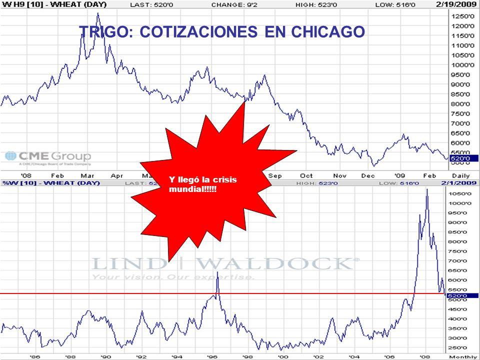 TRIGO: COTIZACIONES EN CHICAGO Y llegó la crisis mundial!!!!!