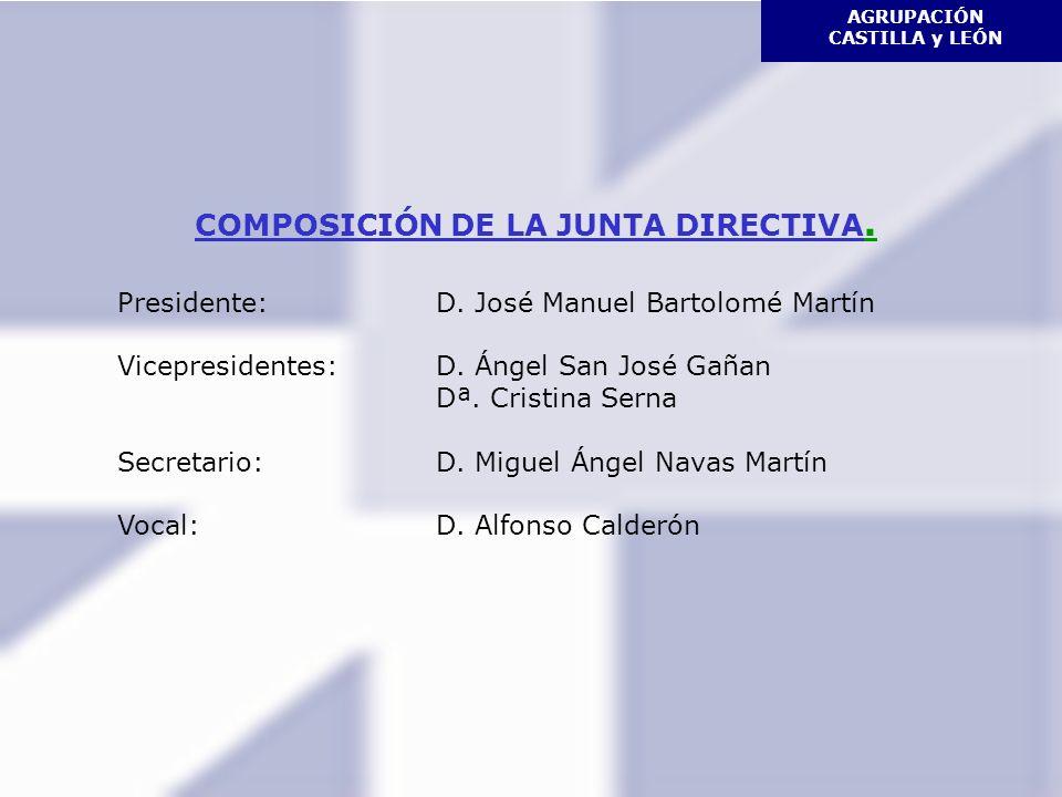 AGRUPACIÓN CASTILLA y LEÓN COMPOSICIÓN DE LA JUNTA DIRECTIVA.