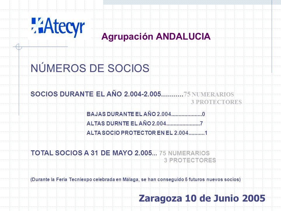 INFORME DE GESTIÓN JUNTA DIRECTIVA PRESIDENTE ANTONIO GÓMEZ AVILÉS-CASCO SECRETARIO LUÍS CROVETTO RODRÍGUEZ TESORERO MANUEL MUÑÓZ ALONSO VOCALES EMILI