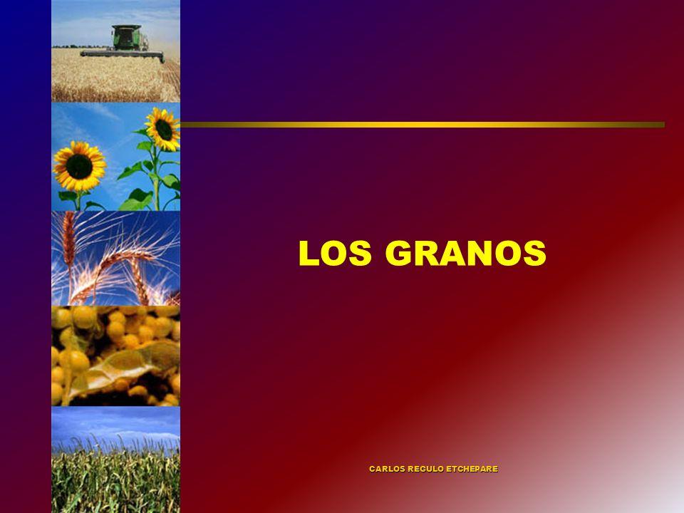 LOS INSTRUMENTOS: L REGISTRO DE OPERADORES DE GRANOS INTERVENCIÓN EN EL MERCADO DE TRIGO Y CARNES IMPORTACIÓN TEMPORARIA DE SOJA CIERRE Y/O LIMITACIÓN DE EXPORTACIONES SUCESIVOS AUMENTOS EN LAS RETENCIONES SISTEMA DE COMPENSACIONES SISTEMA DE PRECIOS RESOLUCIÓN 543 RESOLUCIÓN 684 FALTA DE INFORMACIÓN FONDO FEDERAL CON LAS RETENCIONES A LA SOJA TRIGO PLUS Y MAIZ PLUS CARTAS DE PORTE + CTG REGISTRO DE CONTRATOS ACUERDOS POR EL TRIGO Y EL MAÍZ.